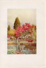 Stampa antica GIARDINO AFFACCIATO sul LAGO D' ORTA barca tipica 1905 Old Print