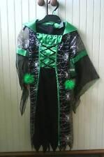 Superbe Robe HALLOWEEN  MEDIEVALE + Perruque noire et verte- 5/6 ans - NEUVE