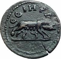 CARACALLA 198AD Parium Parion Mysia Authentic Ancient Roman Coin WOLF i78544