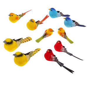 """Lovoski 10Pcs Colorful Tropical 3""""/8cm Feathered Artificial Bird Home Decor"""