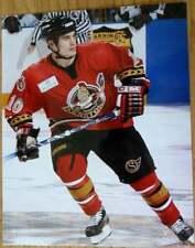 Brandon Bochenski Binghamton NY Senators Hockey 2004 8x10 Color Photo