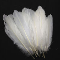 100x Natural Large White Goose Feather 6-8inches/15-20cm Craft Home Decor HOT US