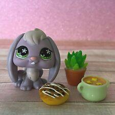 100% AUTHENTIC Littlest Pet Shop LPS #648 Purple Rabbit w Accessories