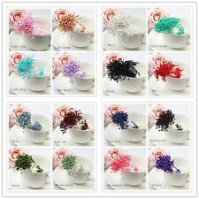 280x Artificial Flower Stamen Double Tip Pearlized Craft Cards Cakes Decorations
