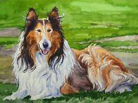 Watercolor Painting Dog Breed Collie Shetland Sheepdog Pet Portrait ACEO Art