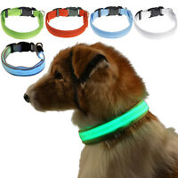 USB Rechargeable Flashing Light Up Adjust Safety Nylon LED Dog Cat Pet Collar