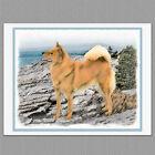 6 Finnish Spitz Dog Blank Art Note Greeting Cards