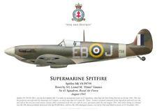 Print Spitfire Mk Vb, S/L Lionel Gaunce, No 41 Squadron RAF, 1941 (by G. Marie)