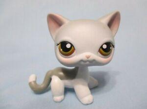 Littlest Pet Shop Gray Grey Shorthair Cat 138 Green Eyes Lps Authentic