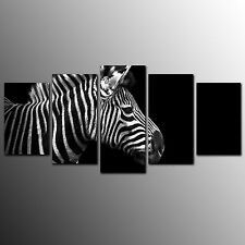Animal Home Decor Canvas Prints Zebra Wall Canvas Art Painting-5pcs-No Frame