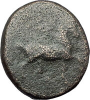 MYLASA in CARIA 210BC Rare Authentic Ancient Greek Coin HORSE & TRIDENT i61351