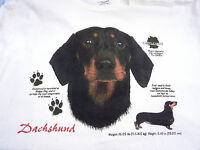 Dachshund Black Tan Dog T Shirt White Large Wiener