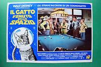 T02 Fotobusta Die Katze Kam Vom Raum Walt Disney Billard Karambole