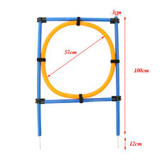 Pet Dogs Doggie Outdoor Games Agility Exercise Training Equipment Jump Hoop
