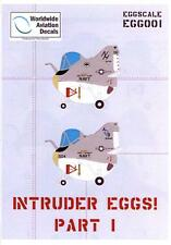 Flevo Aviation Decals INTRUDER EGGS A-6A Intruder Egg Aircraft