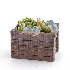 Miniature Fairy Garden Bird Family - Succulent And Tillandsia Planter