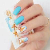 Nail Art Water Decals Transfers Stickers Sea Shells Starfish Beach Holiday BN158