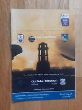 GAA 2011 under 21 Hurling semi final Galway V Limerick