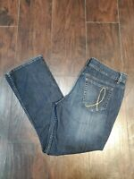 Indigo Riders by Lee Denim Stretch Slim Boot Blue Jeans Size 14P Petite EUC
