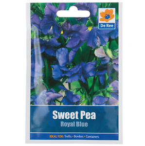 Sweet Pea ROYAL BLUE Seeds - Pictorial Packet - Fragrant Cut Flowers - Free Post