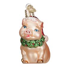 """Holly Pig"" (12420)X Old World Christmas Glass Ornament w/OWC Box"