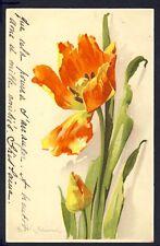 POSTKARTE Meissner & Buch Illustration Litho C. KLEIN TULIPES FLOWERS BLUMEN