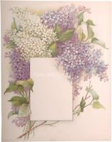 Lilac Flowers & Space 1910 Victorian Color Litho 10x13 Print - Chromolithograph