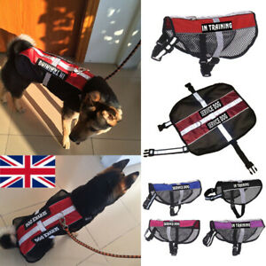 No Pull Reflective Service Dog Harness Training Pet Vest Coat & 2 Free Patches