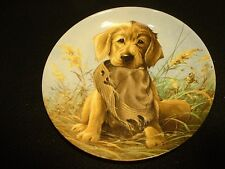 "Edwin M. Knowles Plate ""Field Puppies"" ""Caught in the Act-Golden Retriever"" MIB"