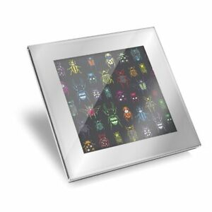 Silver Glass Coaster - Colorful Beetles Bugs Insect  #15922