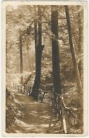 Pittston Region of Pennsylvania Woodland Path 1911 Real Photo Postcard