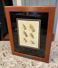 Rare~Vintage 1960's Orvis Mahogany Wood Display / Presentation Case for Flies