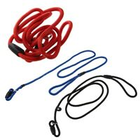 Strong Nylon Pet Dog Lead Puppy Walking Slip Collar Rope Strap Training Le H0X8