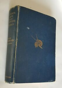 Natural Law in the Spiritual World by Henry Drummond 1885 16th Edition Hardcover