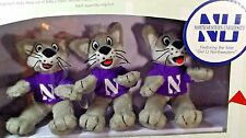 Northwestern University Wildcats Musical Mobile Licensed NCAA New Football