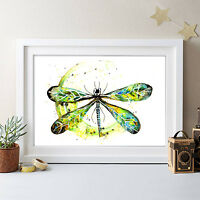 WATERCOLOR DRAGONFLY PAINTING ORIGINAL PRINT BY ARTIST NEW SIGNED