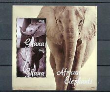 Ghana 2014 MNH African Elephants 2v S/S I Fauna Wild Animals