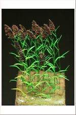 Reality In Scale 1:35 54mm Reed Plants - DIorama Accessory #GL113