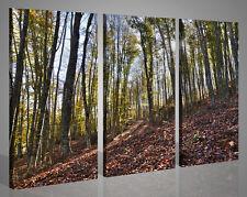 Quadri moderni canvas LA PENDENZA DELLA NATURA stampe su tela pronte 130 x 90