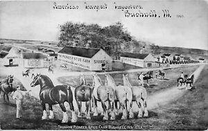 H71/ Bushnell Illinois Postcard c1910 Largest Horse Importer Truman 188