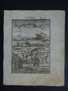 1719 MALLET Atlas engraving view SUGARCANE PLANTATION - Sucrerie - West Indies