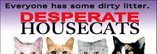 Desperate Housewives spoof (Parody) Humor - Housecats Bumper Sticker - Brand New