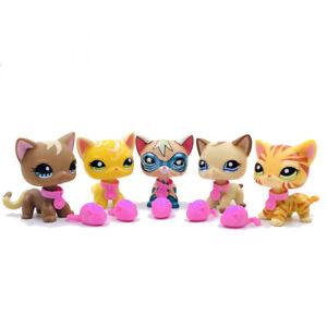 5Pcs/set Littlest pet shop toys LPS TOYS short hair cats with 10 pcs Accessories