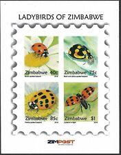 More details for zimbabwe 2018 ladybirds of  zimbabwe