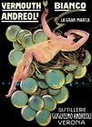Vermouth Bianco 1921 Verona Italy Vintage Poster Print Retro Style Liquor Art