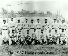 1937 HOMESTEAD GRAYS 8X10 TEAM PHOTO BASEBALL PICTURE NEGRO LEAGUE CHAMPS