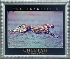 "Running Cheetah ""Spotted Wind"" Wildlife Animal Wall Decor Silver Framed Picture"