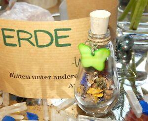 Element *Erde* Hauswächter Blüten, Samen, ERDUNG, Aventurin Wicca,Naturmagie,Eso