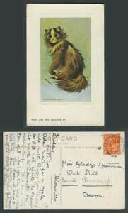 Louis Wain Artist Signed Cat Kitten, What Are You Laughing At? 1918 Old Postcard