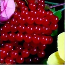 "6mm Smooth Natural Red Jade Round Shape DIY Gemstone Loose Beads Strand 15"""